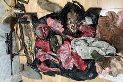 شاهوار محل حضور شکارچیان استانهای شمالی/متخلفان دستگیر شدند