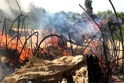 Nijerya'da bir köye düzenlenen silahlı saldırıda 14 kişi hayatını kaybetti