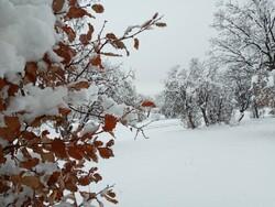 Winter snow whitens Dehdez in Khuzestan Province