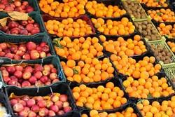 رد پای سلف خری در گرانی میوه/ تعاونی های روستایی باید احیا شود