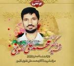 شہید ڈاکٹر محمد علی نقوی کی برسی میں ہزاروں افراد کی شرکت متوقع