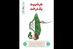 کاشت ۱۱۰ نهال به نیت ۱۱۰مادرشهید در ویژه برنامه «هر شهید یک درخت»