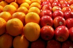 قیمت انواع میوه و صیفی جات در مرکز عمده فروشی اعلام شد