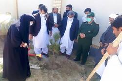 یک هزار و ۵۰۰ اصله نهال در مهرستان غرس می شود