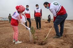 """İran'da """"Her Çocuk Bir Fidan"""" projesi"""
