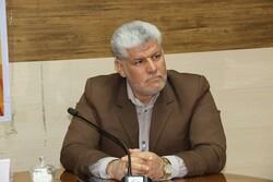 عامل تحرکات ضد امنیتی در بافت دستگیر شد