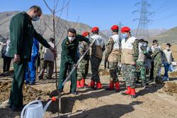 آئین روز درختکاری در اردوگاه شهید مطهری کرج