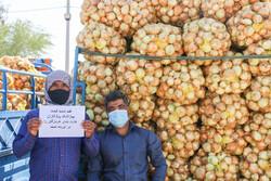 خرید تضمینی ۲۳ هزار تن پیاز مازاد از کشاورزان جنوب