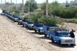 آغاز عملیات اجرایی طرح توزیع و کاشت ۴۵۰۰ نهال مثمر نخل در خرمشهر