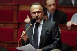 مرگ سیاستمدار و میلیاردر سرشناس فرانسوی در یک سانحه هوایی