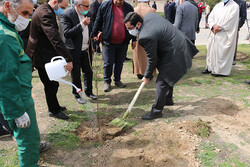 ۲۵ اصله درخت در بوستان باغنو به نام شهدای مداح غرس شد