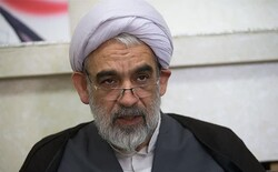 Ayatollah Sistani's wise stances, source of honor for Islam