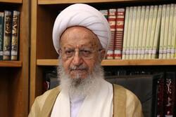 آیتالله مکارم شیرازی به چند استفتاء درباره سگ گردانی پاسخ دادند/ضرورت تصویب قانون ممنوعیت سگ گردانی