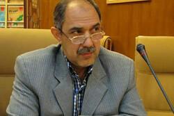 مدیرعامل انجمن موسیقی ایران معرفی شد