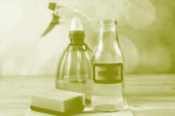 جایگزین پاککنندههای شیمیایی