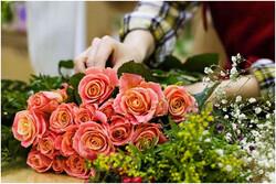 راهنمای انتخاب دسته گل زیبا و اثرگذار