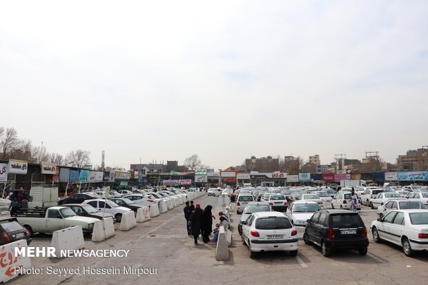 Houseplants market in Mashhad