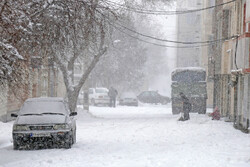 حال و هوای حرم مطهر رضوی در بارش برف زمستانی
