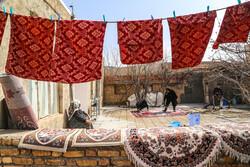 شستشوهای سنتی عید قربان مدیریت شود