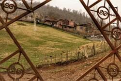 توسعه تعاونی دهیاری ها موجب مهاجرت معکوس روستاییان می شود