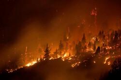 ۴ هکتار از ذخیره گاه جنگلی سمیرم در آتش سوخت