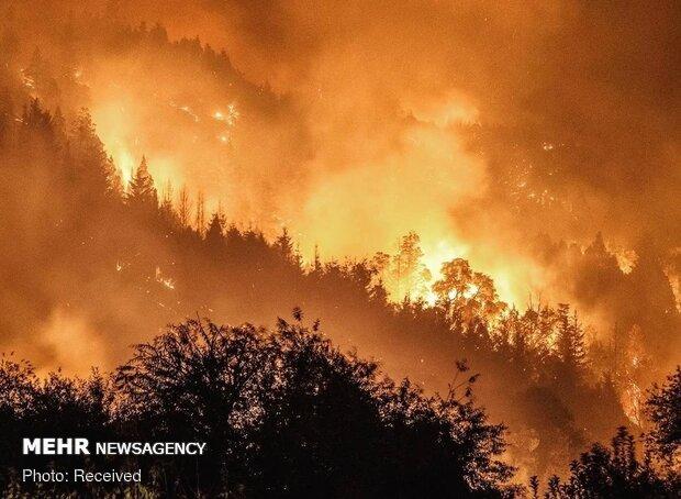 آتش نشانان ایران آتش سوزی جنگل های ارمنستان را خاموش کردند