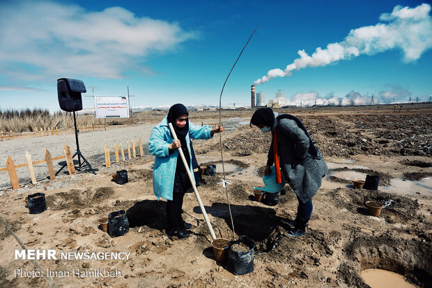 Project for planting 100,000 trees kicks off in Hamedan