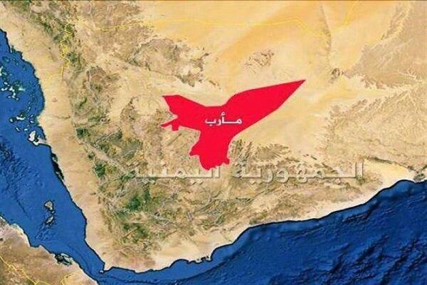القوات المسلحة اليمنية تواصل عملياتها لتحرير مأرب