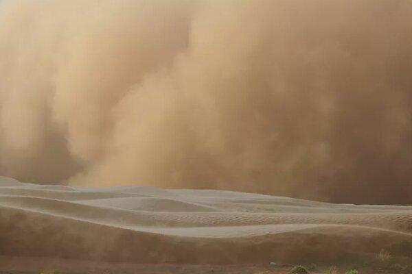 لحظه وقوع طوفان و افتادن نخلها در زریندشت