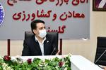 دولت منافع مرغ گلستان را مصادره کرده است/ پاسوز پایتخت شده ایم