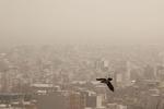 هوای تهران برای گروههای حساس آلوده است
