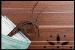 برگزاری چند جشنواره موسیقی در جوار خلیج فارس/ تلویزیون حمایت کند
