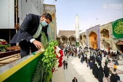 گلآرایی و تزیین حرم امام علی (ع) در آستانه اعیاد شعبانیه