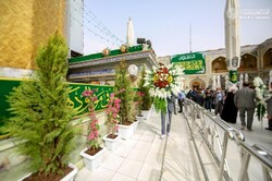 Ornamentation of Imam Ali's holy shrine on Sha'ban occasion