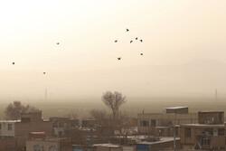 رگبار پراکنده در برخی مناطق کشور/گرد و خاک در زابل