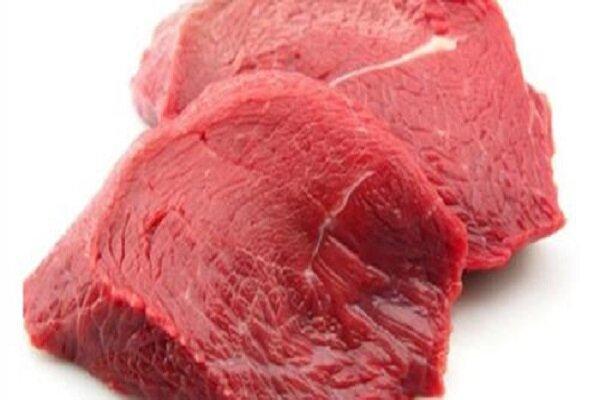 ۴ طرح فناورانه برای تأمین گوشت و شیر اجرا می شود