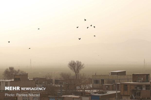 بام ایران در دام گرد و غبار
