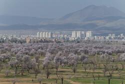 تصاویری از زیبایی های طبیعی قزوین