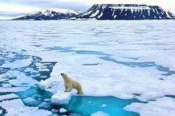همکاری چین و آمریکا برای مقابله با گرمایش زمین