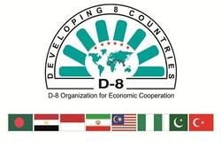اقتصادی تعاون تنظیم ڈی 8 کے رکن ممالک کے سربراہی اجلاس کا آغاز