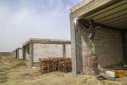 ۵۰ هزار واحد مسکونی روستایی در زنجان مقاوم سازی شده است