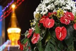 حال و هوای حرم رضوی در سالروز ولادت حضرت علی اکبر (ع)