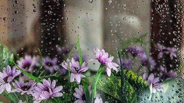 رگبار و بارش باران به استان سمنان میرسد/ وزش باد شدید در شمال