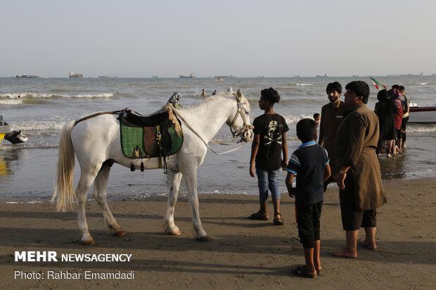حضور مسافران نوروزی در سواحل بندرعباس