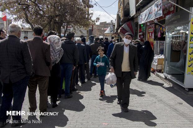مشکل بازار مرغ در خراسان شمالی تا هفته آینده رفع میشود