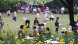 تجمع در بوستانها و تفرجگاههای مشهد در روز طبیعت ممنوع شد
