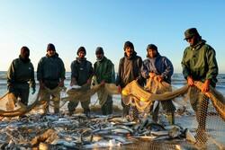 Last days of fishing season in Jooybar, Mazandaran prov.