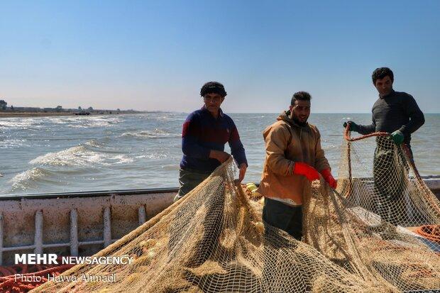 صید ماهی در لاریم بزرگ جویبار