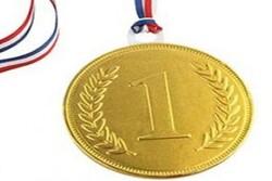 ورزشکار گلستانی مدال طلای خود را به مادر شهید مدافع حرم تقدیم کرد