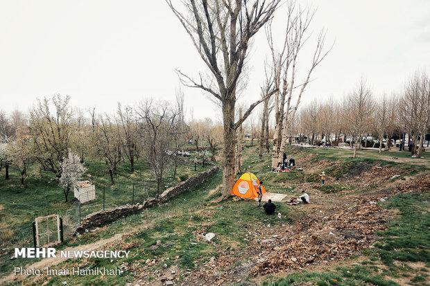 """İran'da """"Doğa Günü"""" bölye kutlandı"""